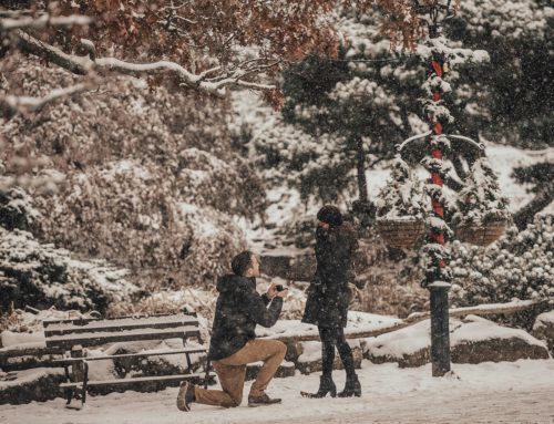 Dylan & Jaclyn / Proposal in Peddlers Village